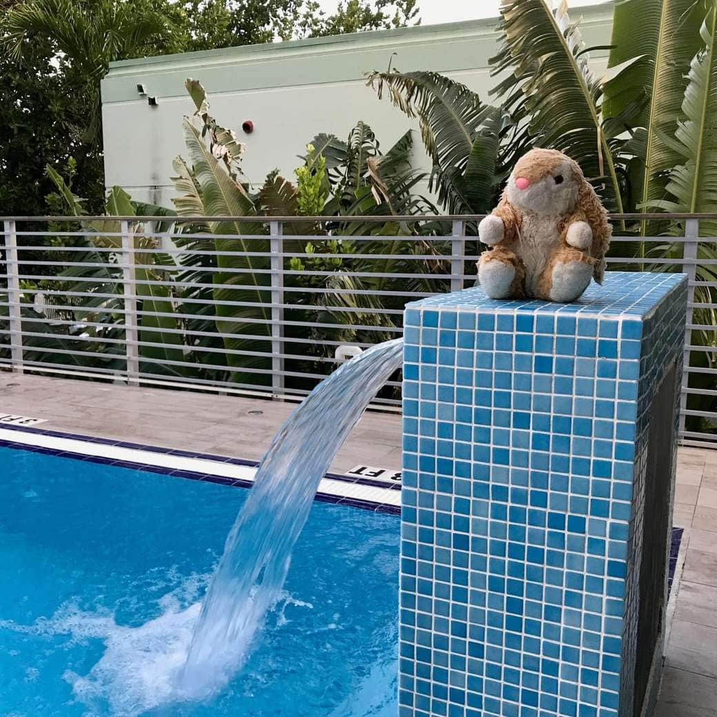 Image of Bunny at Urbanica pool