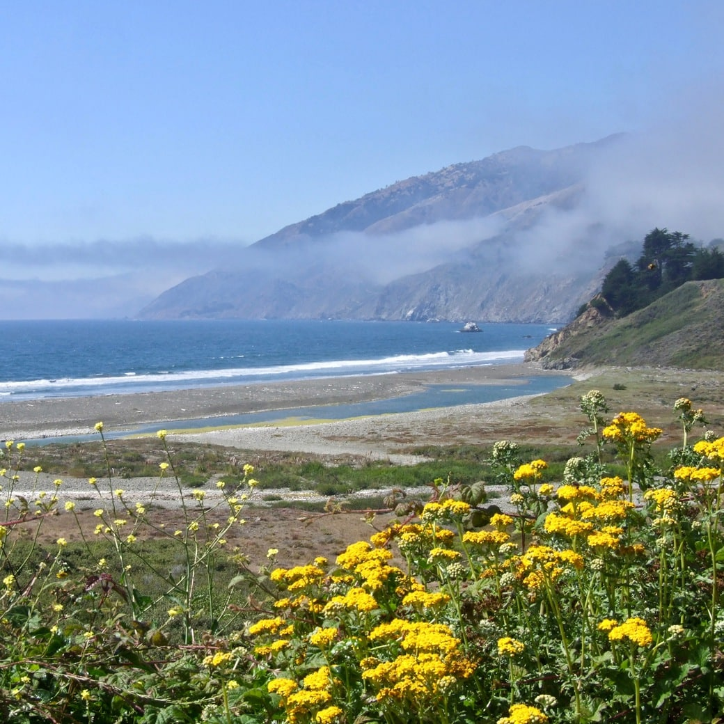 Image of the Pacific Coast Highway