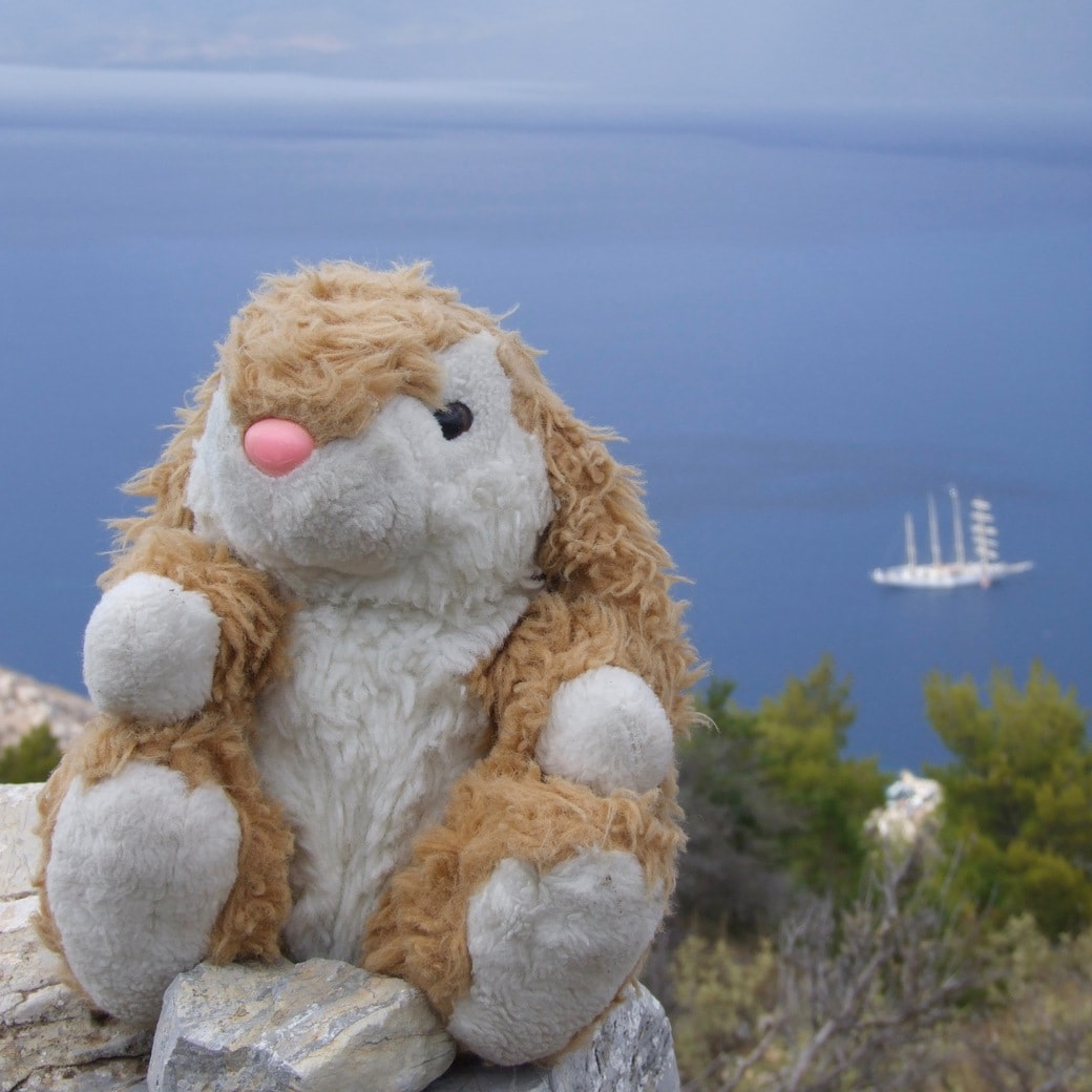 Image of Bunny in Greece