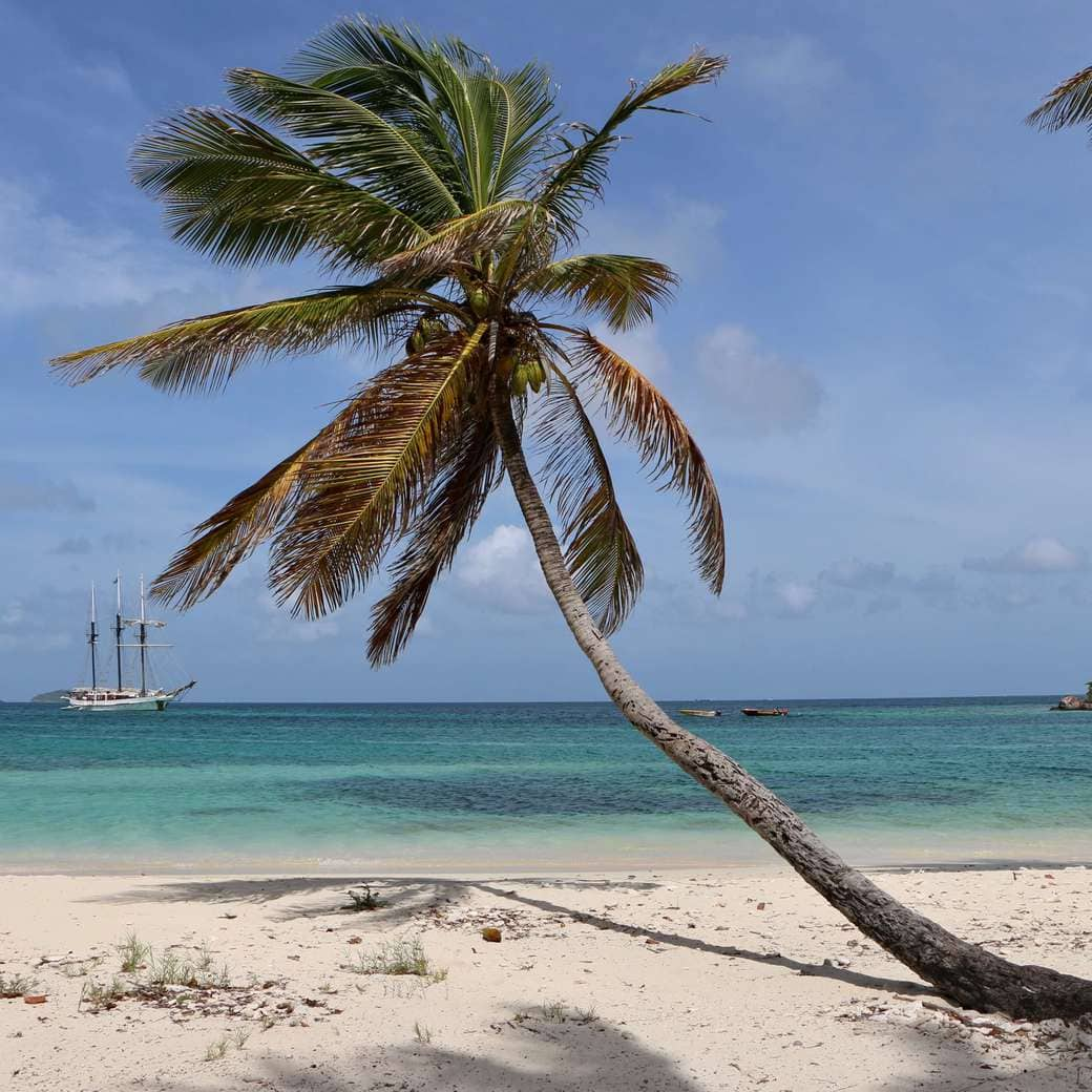 Image of Tobago Cays