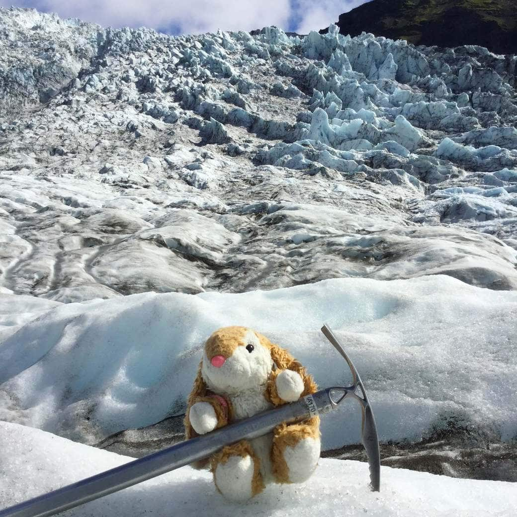 Image of Bunny with an ice axe