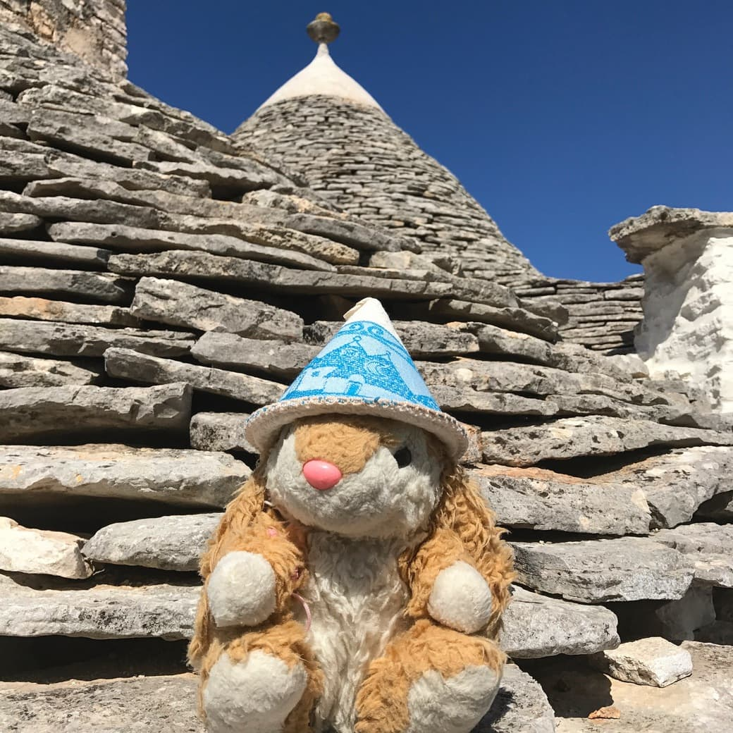 Image of Bunny at Alberobello