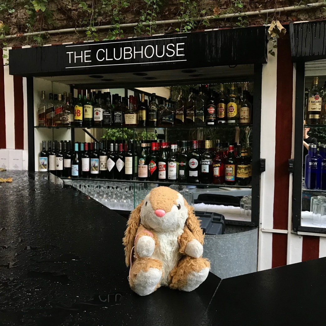 Image of Bunny at the Clubhouse