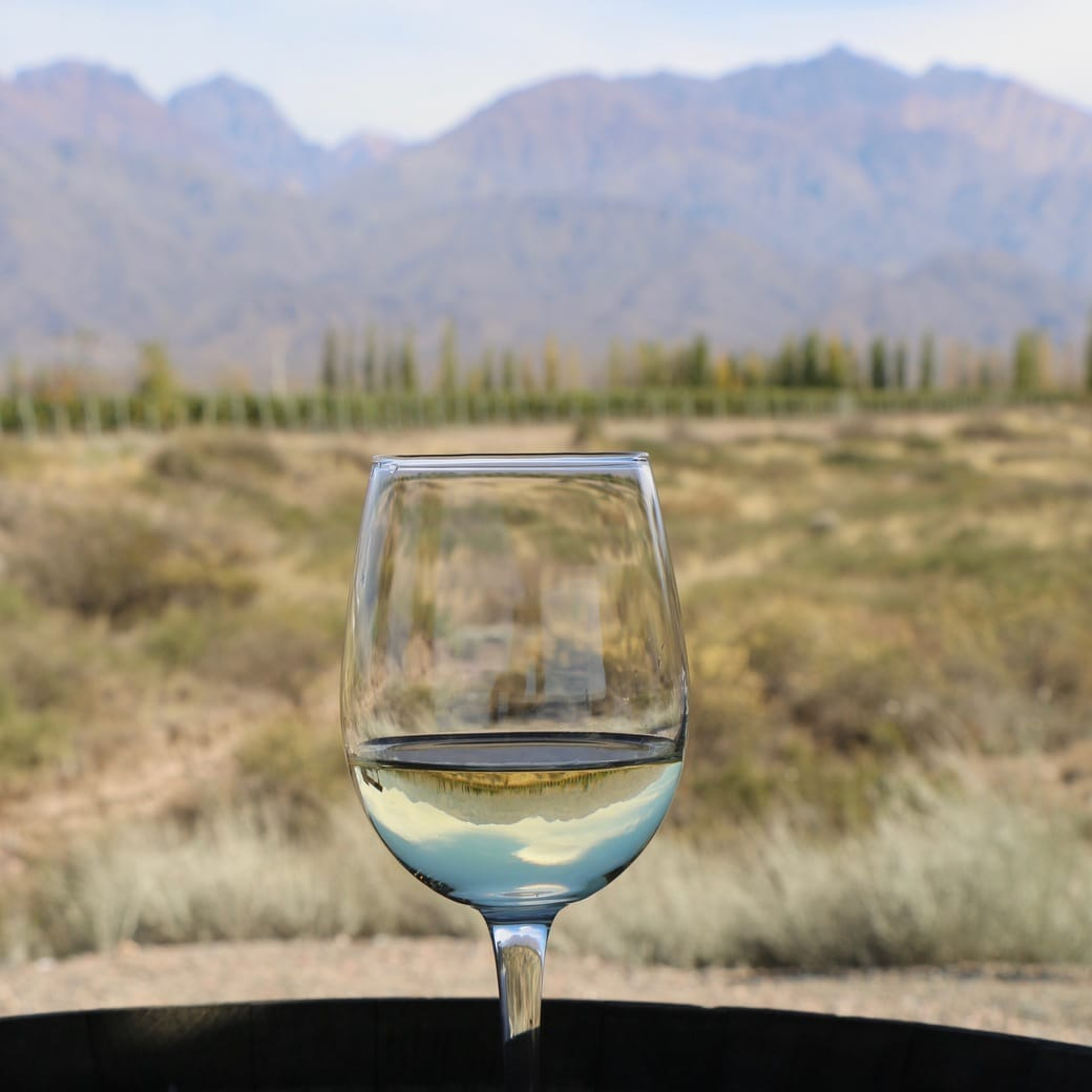 Image of Argentinian wine