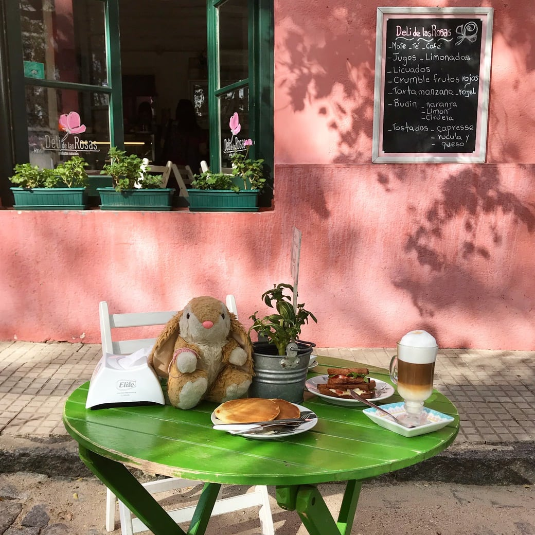 Image of Bunny in Colonia del Sacramento