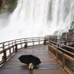 Image of Bunny at Iguazu Falls, Argentina