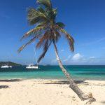 Image of Tobago Cays