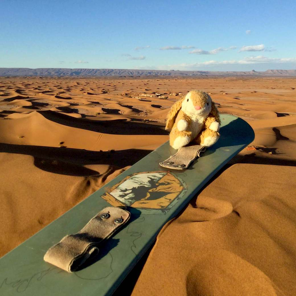 Image of Bunny sand boarding