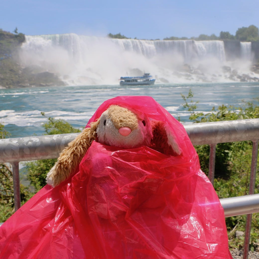 Image of Bunny at Niagara Falls