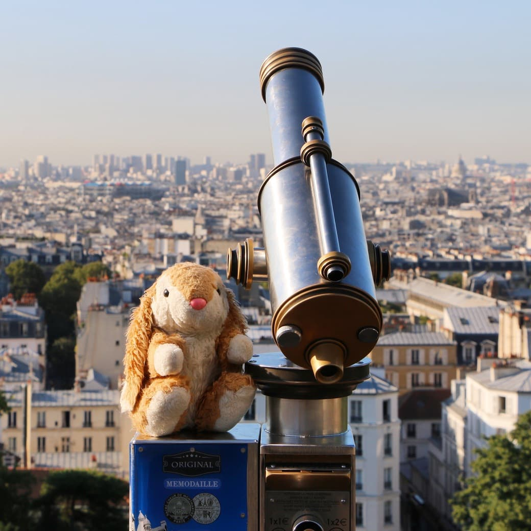 Image of Bunny in Paris