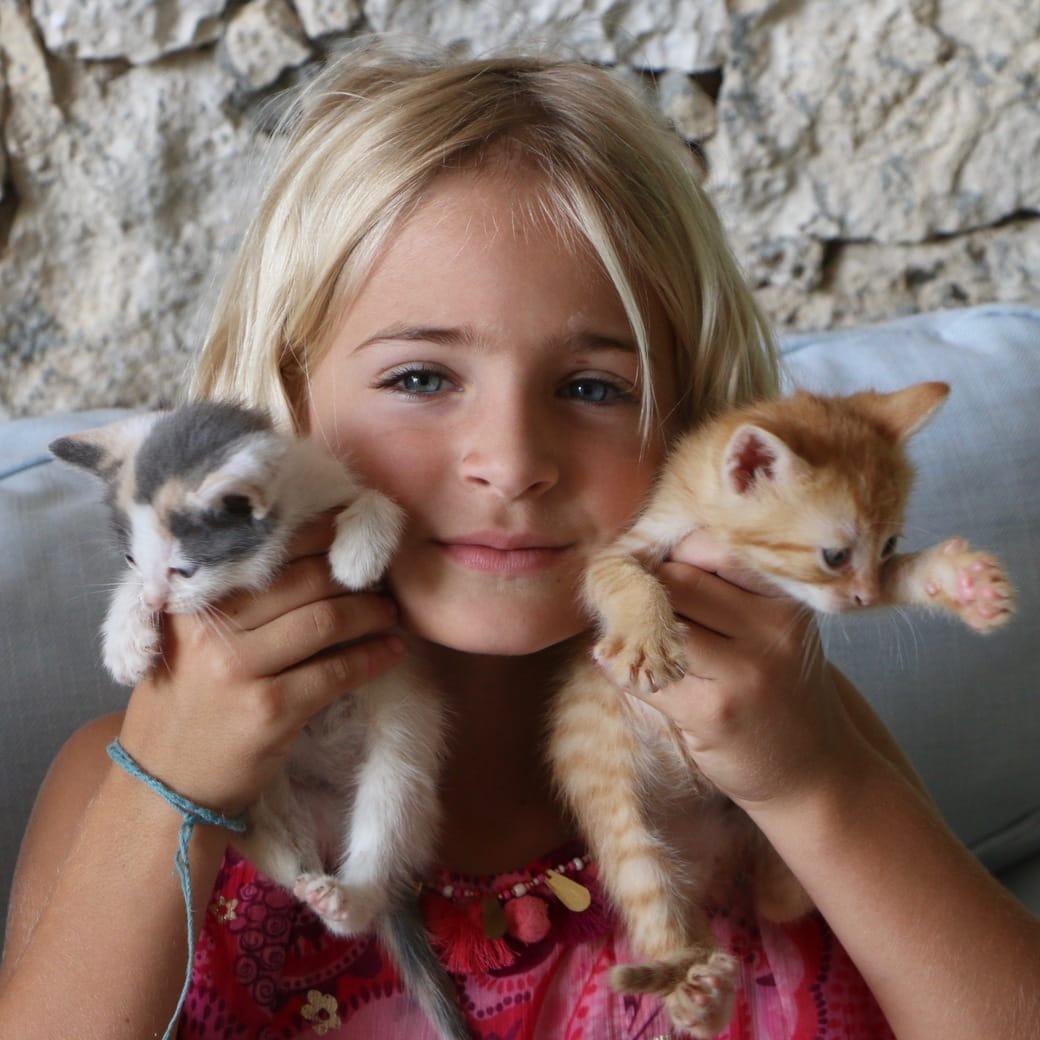 Image of kittens and a girl
