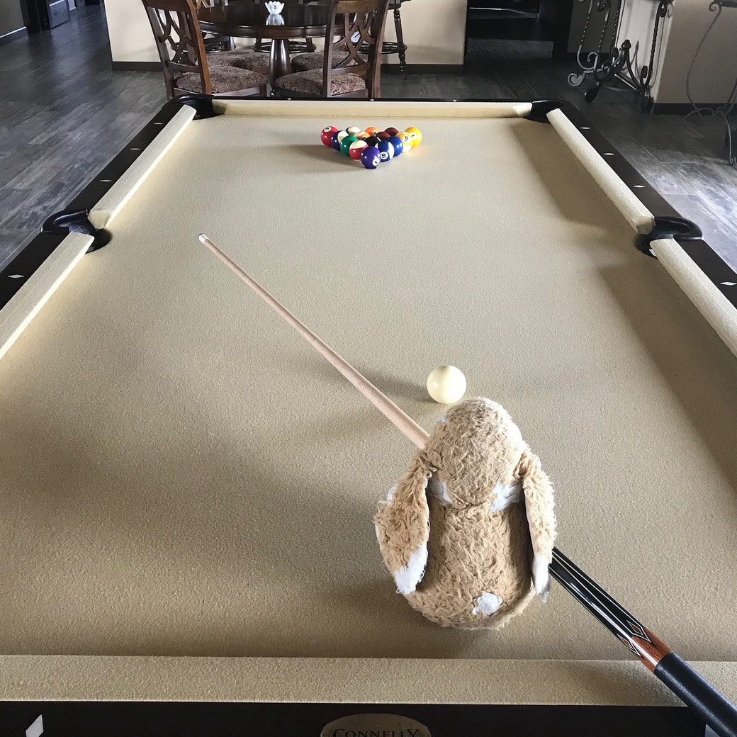 Image of Bunny playing billiards