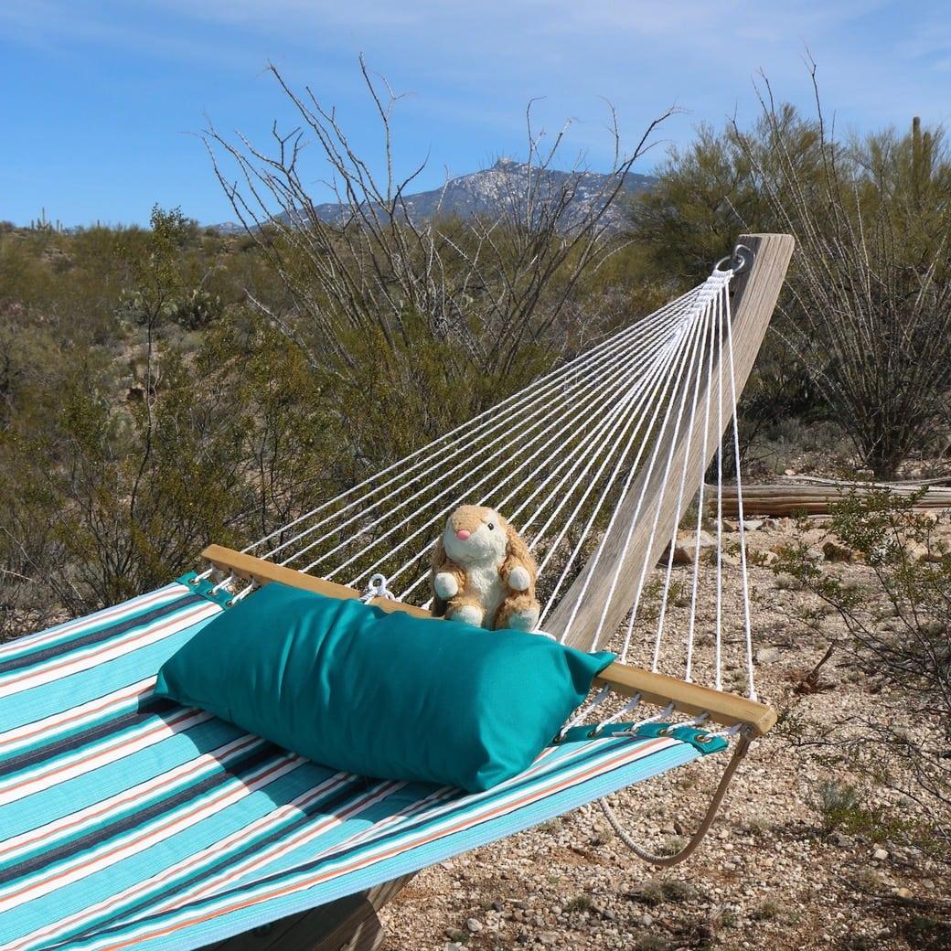 Image of Bunny in hammock