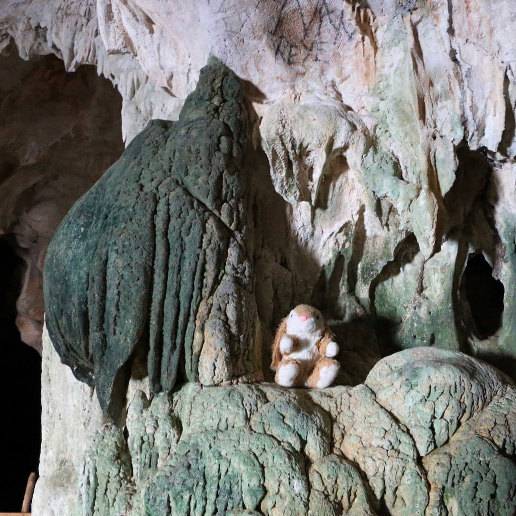Image of Bunny in a cave