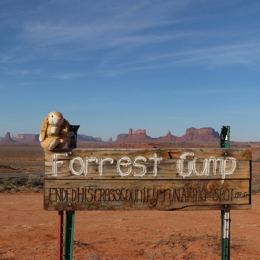 Bunny at Forrest Gump Point