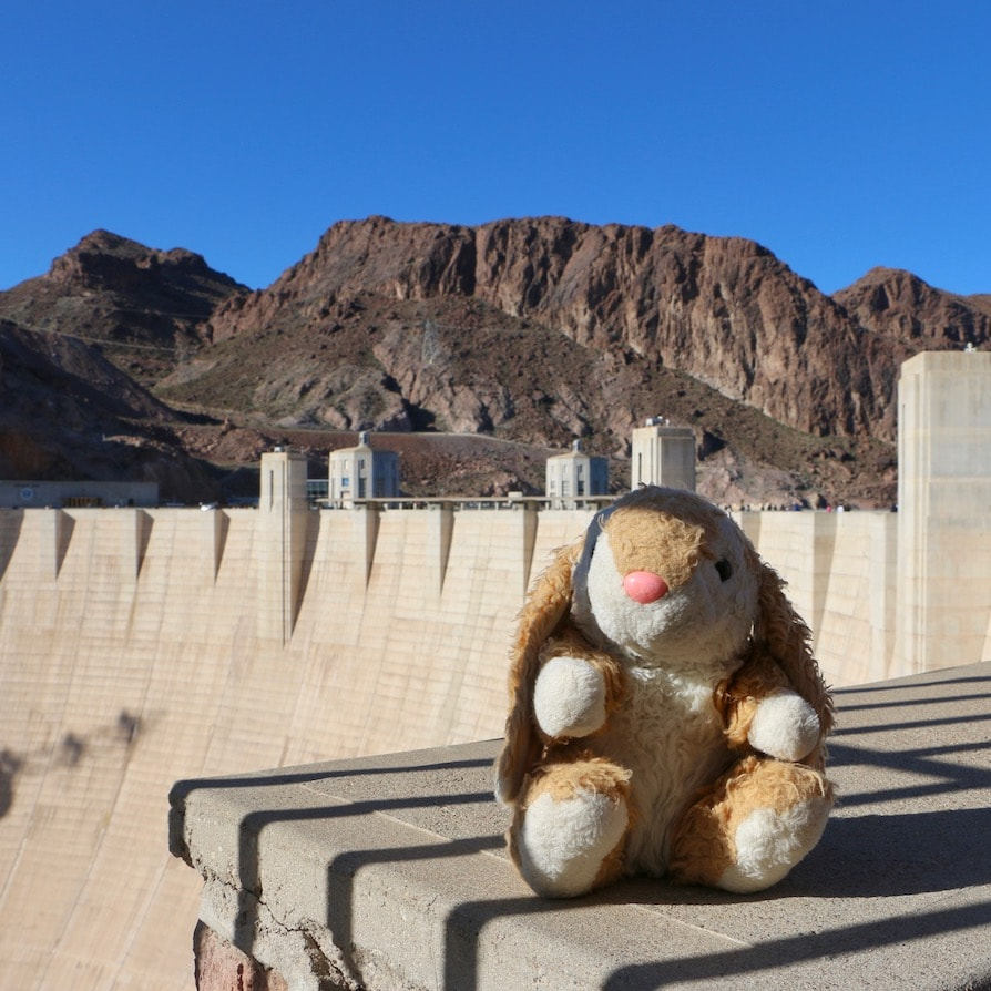 Bunny at Hoover Dam