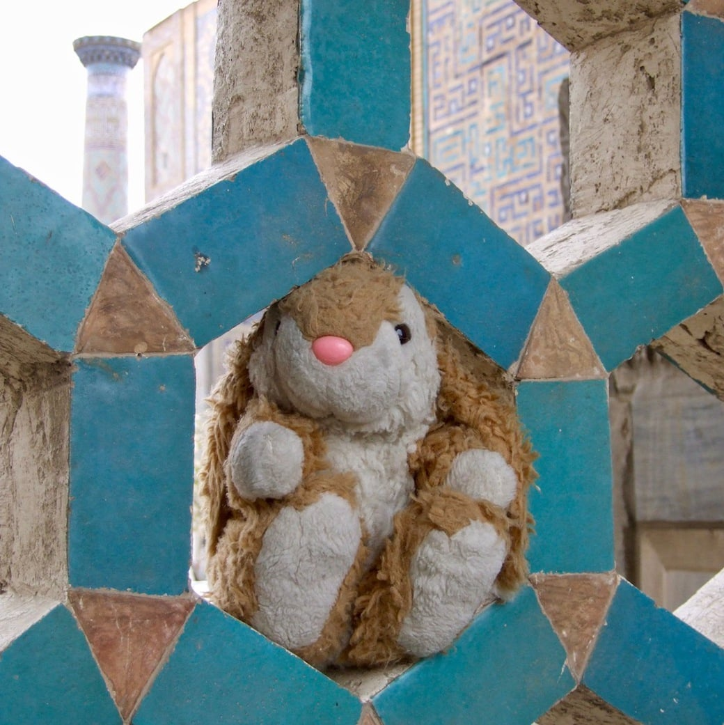 Bunny posing in Registan, Samarkand