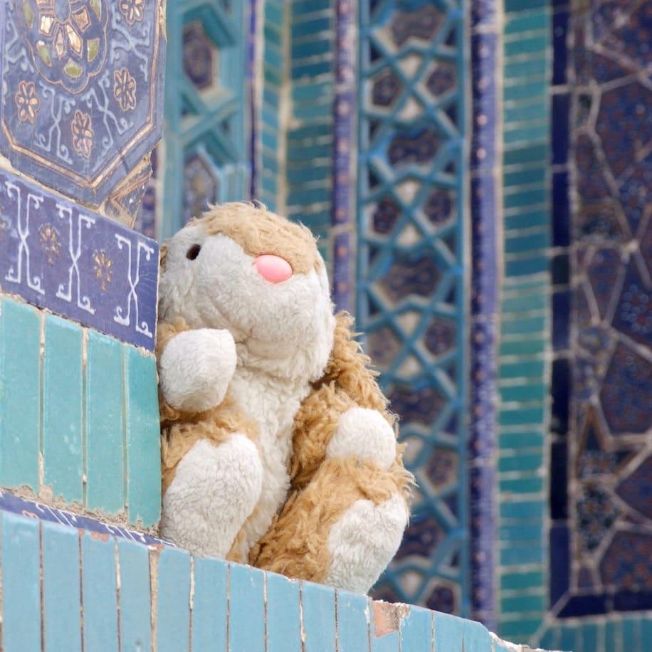 Bunny posing in Samarkand