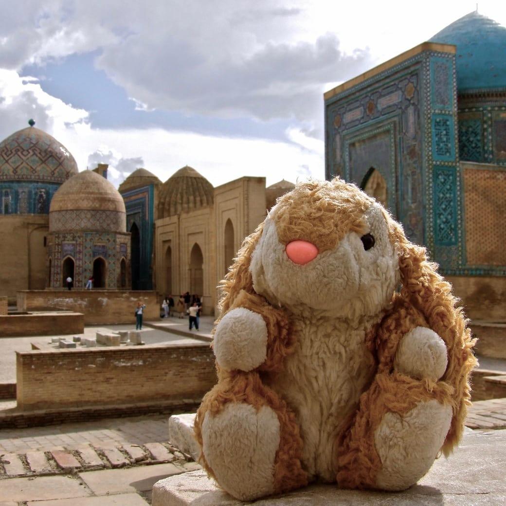 Bunny posing on the Silk Road