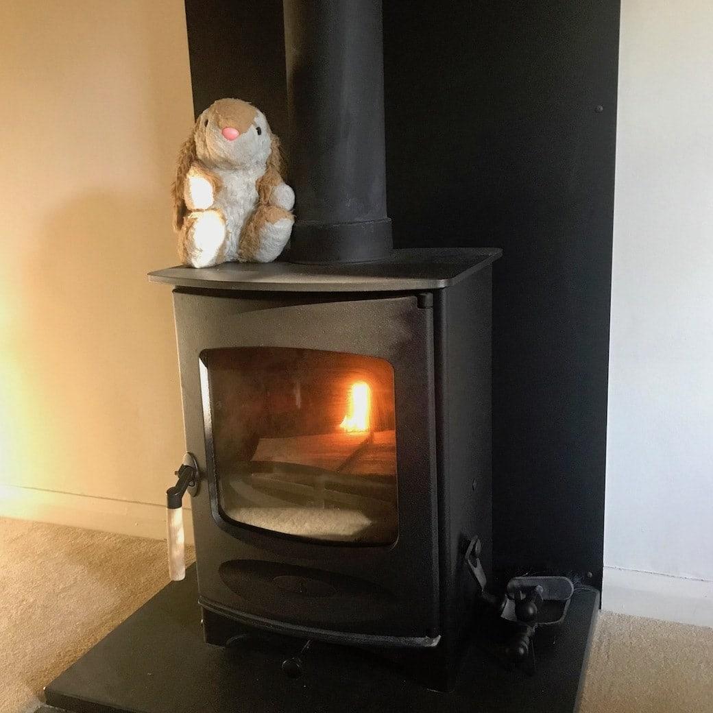 Bunny enjoying the fireplace