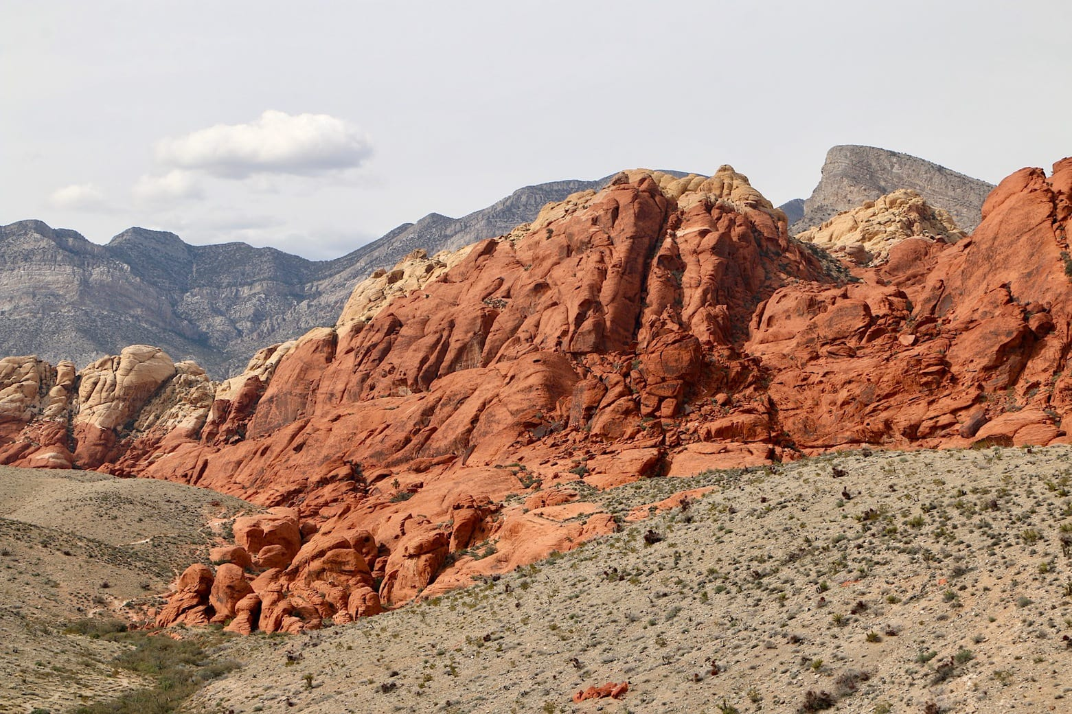 Red Rock Canyon scenery