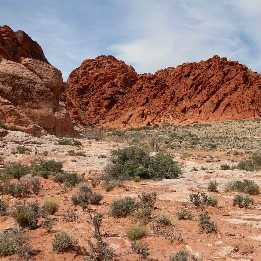 Red rock scenery