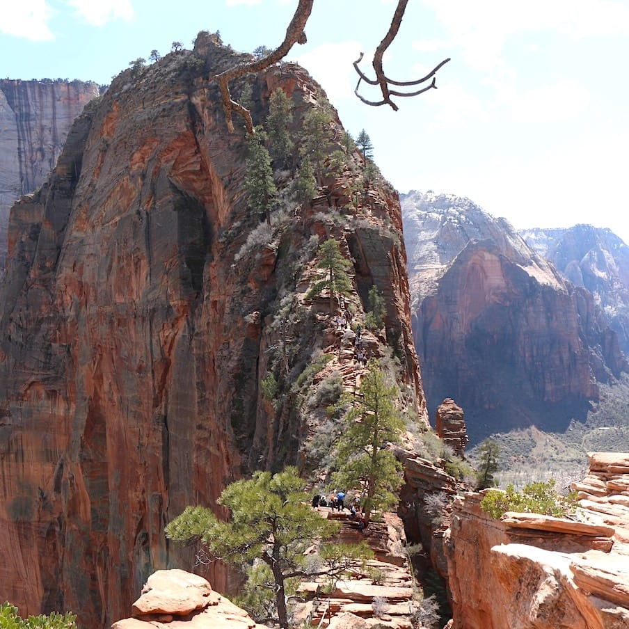 The very scary Angels Landing