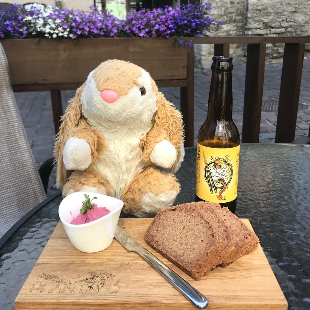 Bunny trying out local craft beer