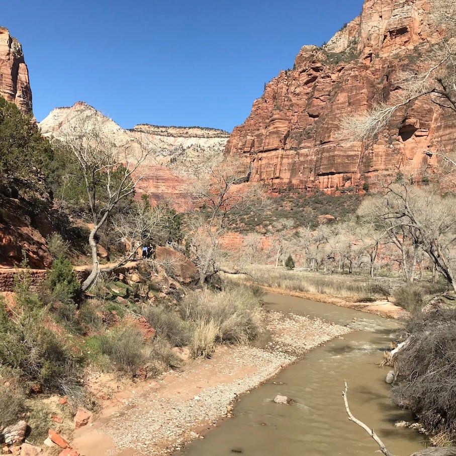 Easy Riverside Walk in Zion NP