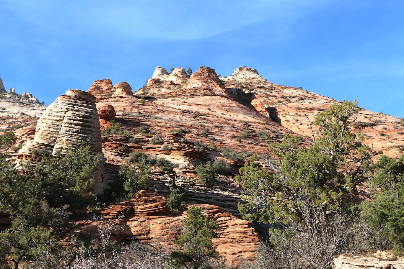 Beautiful scenery on the Canyon Overlook Trail
