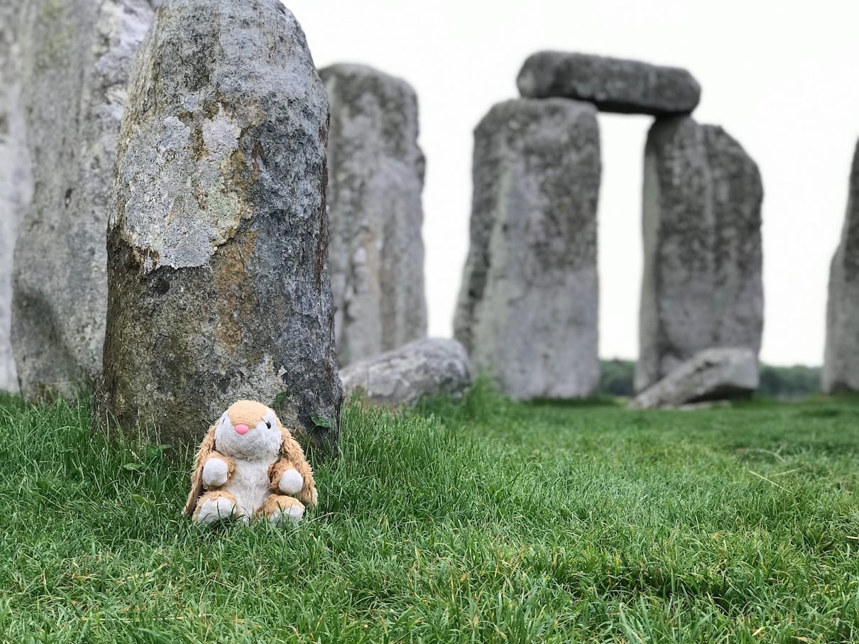 Bunny in the stone circle