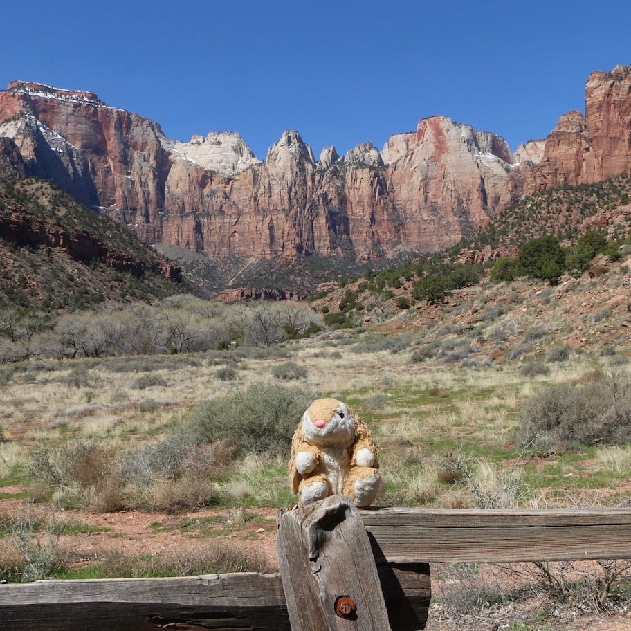 View behind the Zion museum