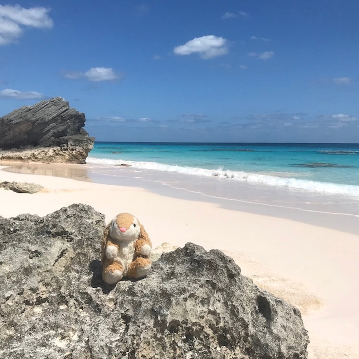 Bunny'S favourite beach on the trip