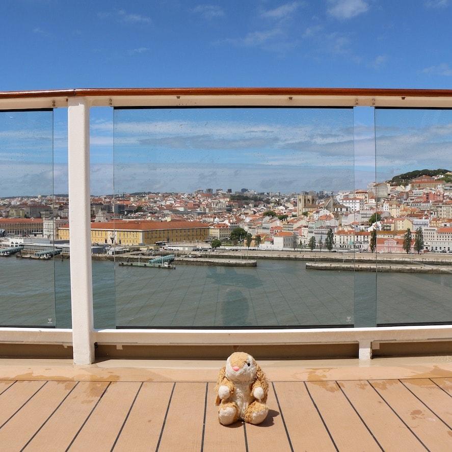Bunny approaching Lisbon