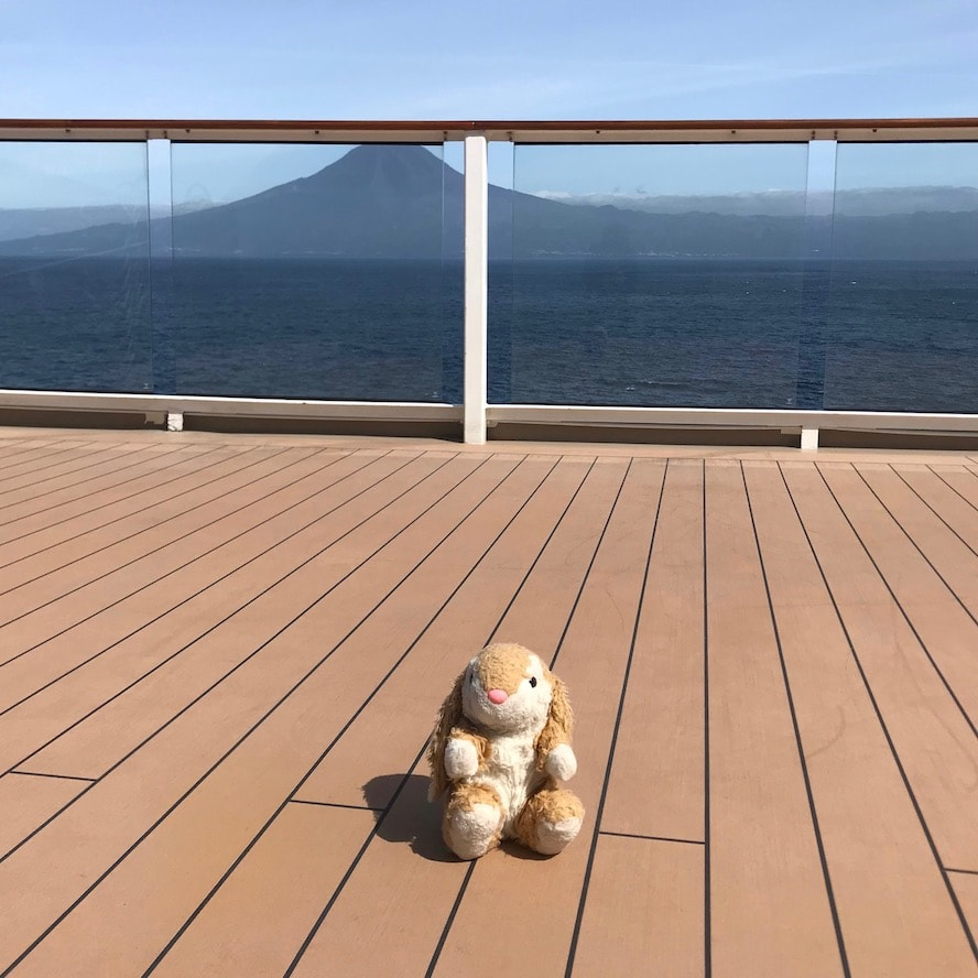 Bunny decided to visit the Azores in the future