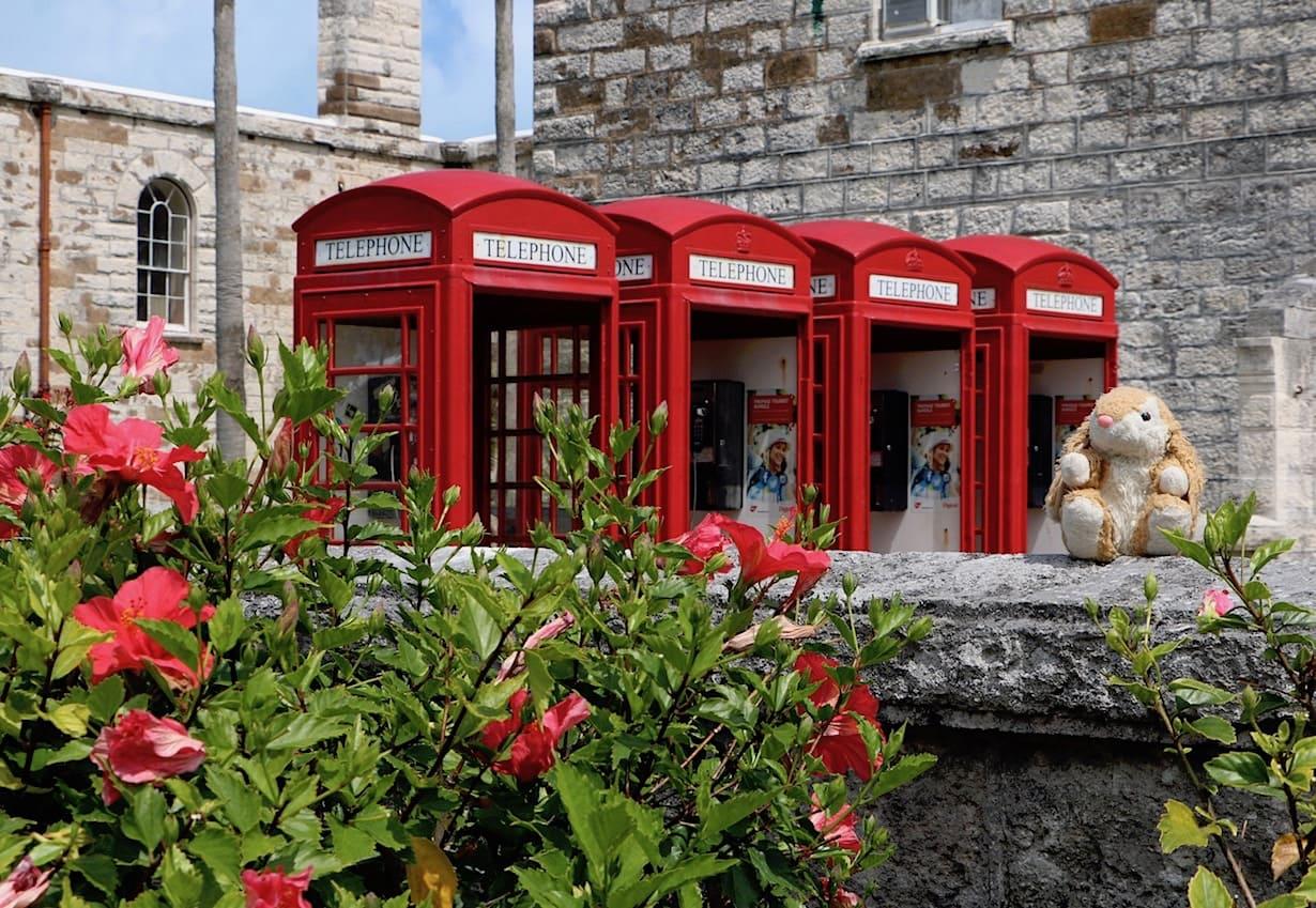 British cuteness in Bermuda