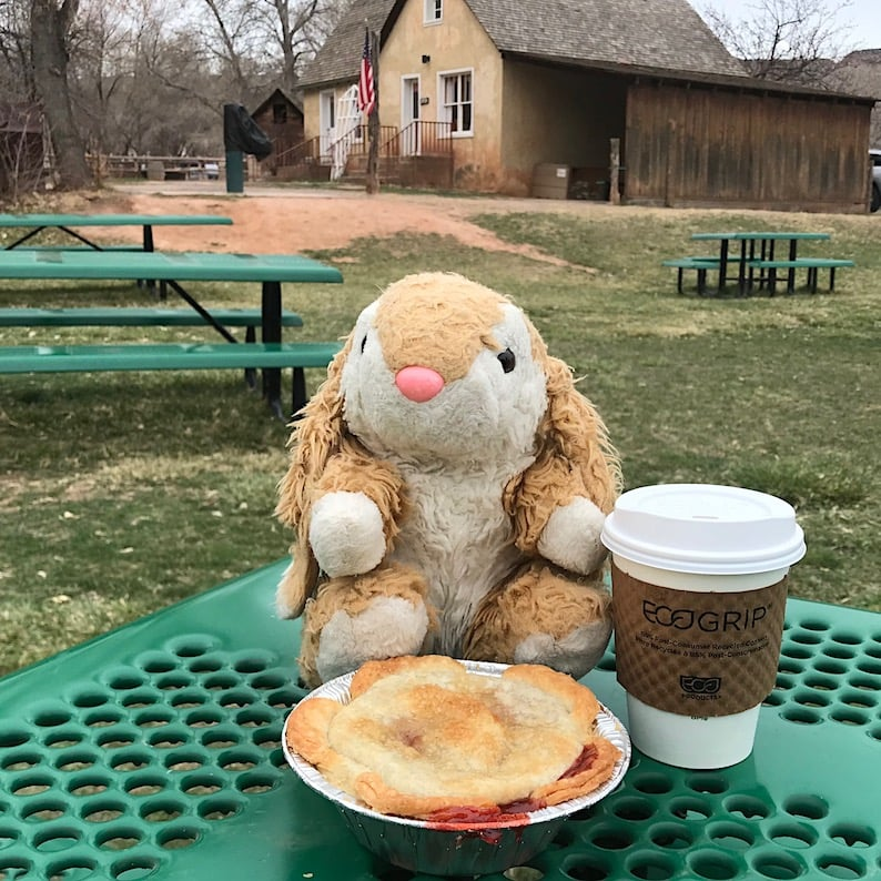 Bunny tasting the famous pie
