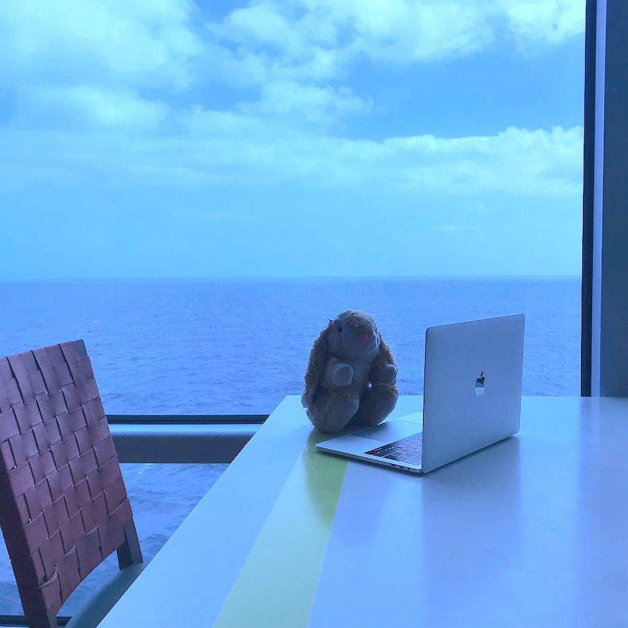 Bunny's Oceanview cafe workstation