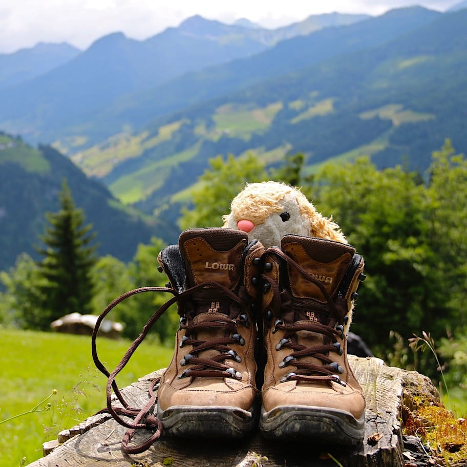 Bunny hiking in Austria