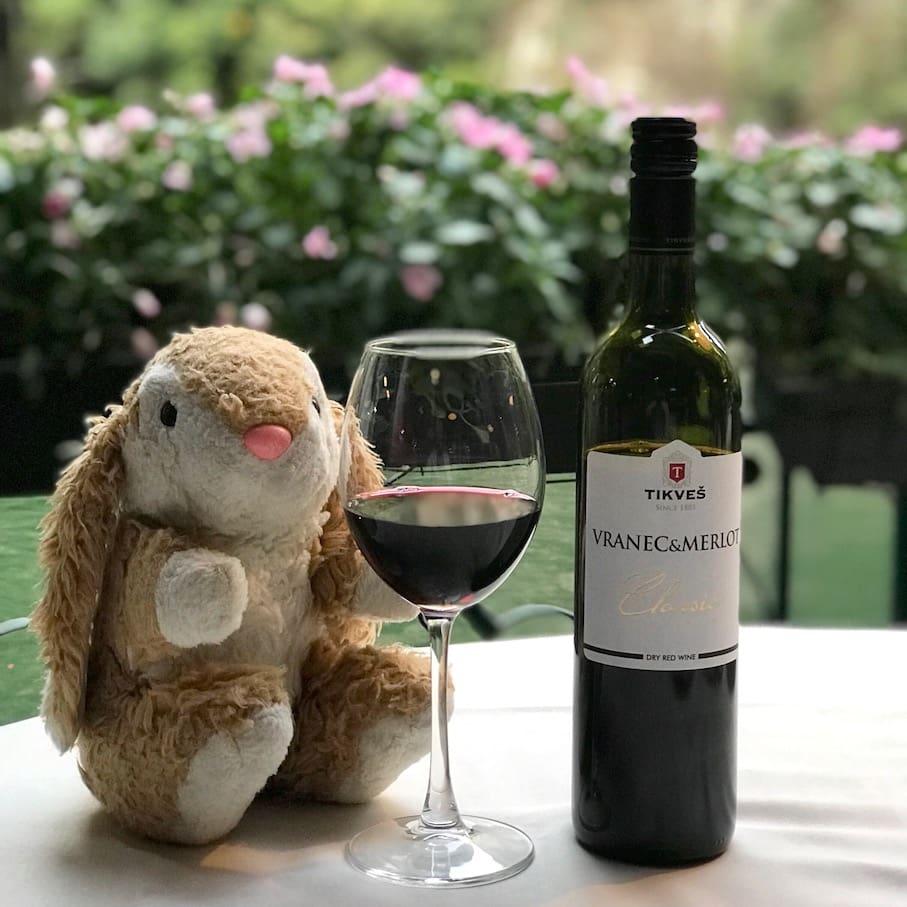 Bunny wine tasting
