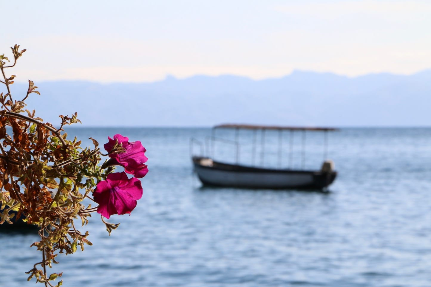 Lake Ohrid view