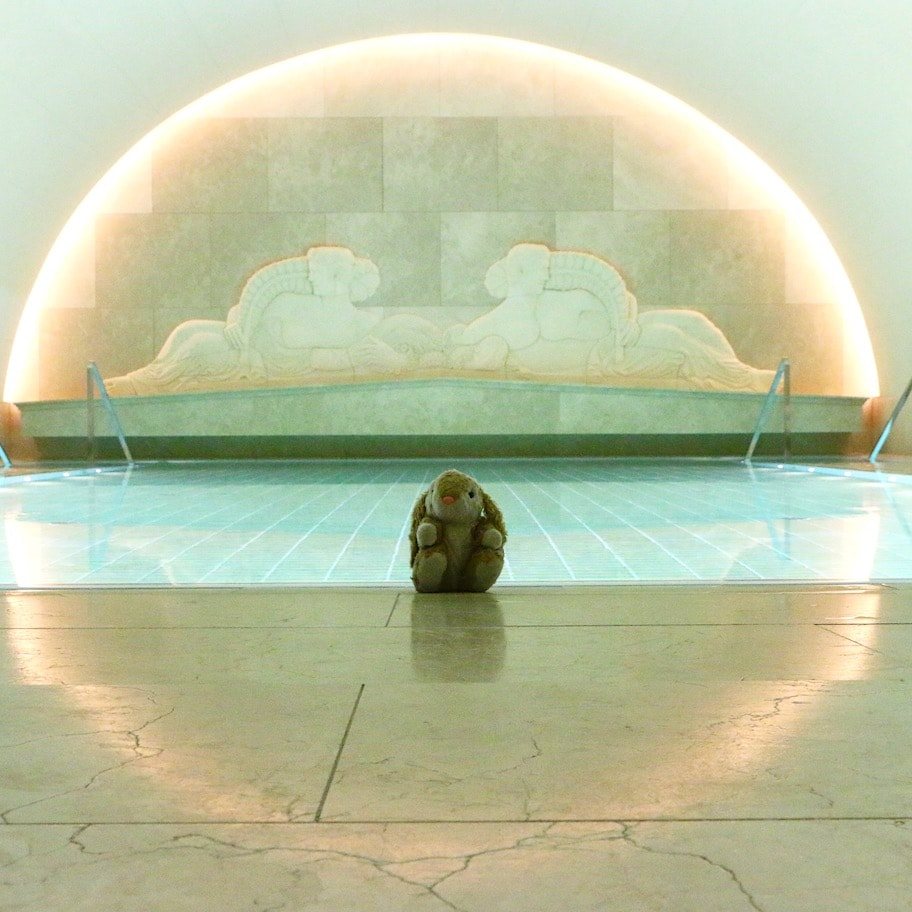 Bunny the spa lover