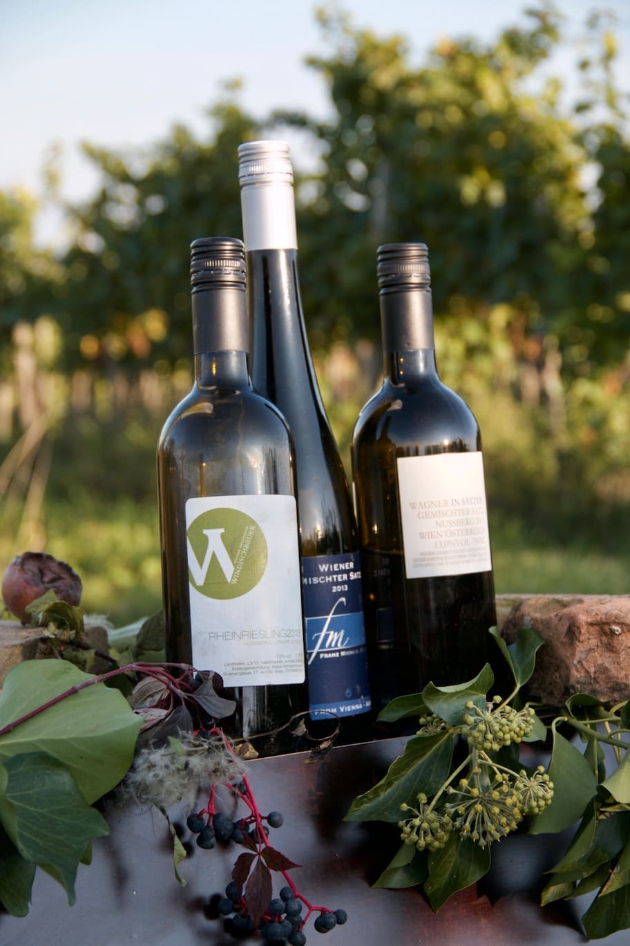 Hiking in Sonoma County | Alexander Valley Wineries ... |Hiking Wine