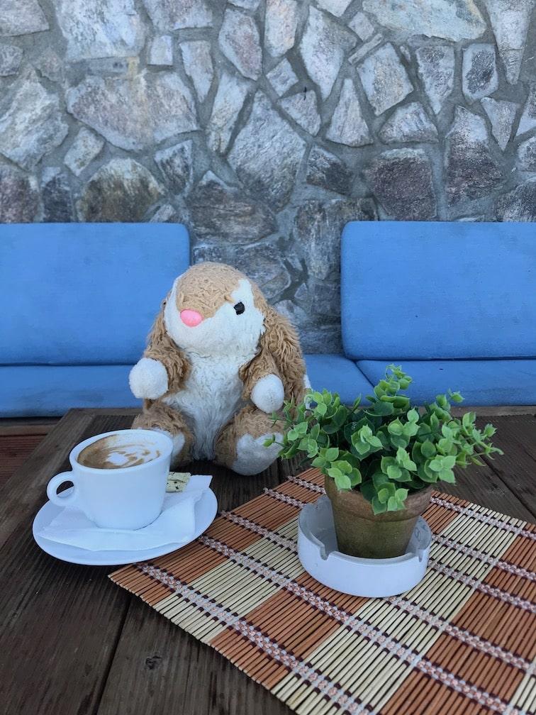 Bunny in Trpejca fishing village
