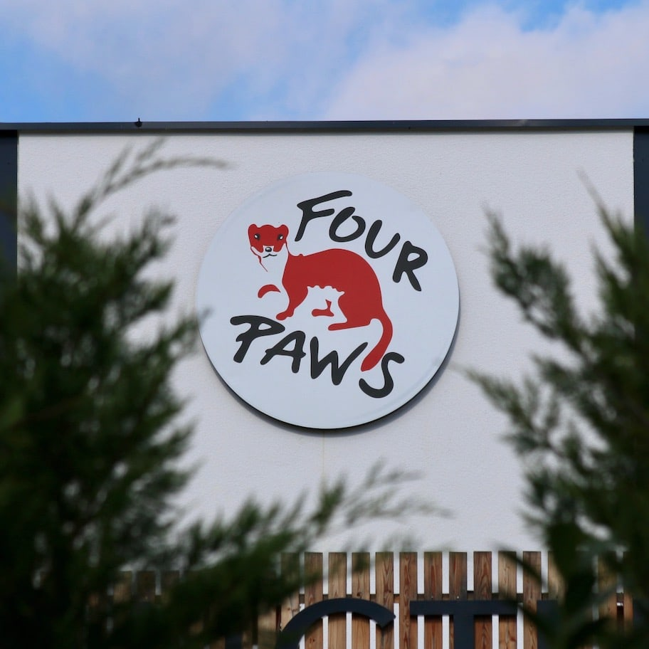 Four Paws Austria helped set up the Bear Sanctuary