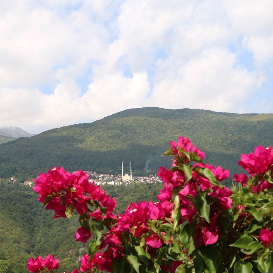 View from Bigorski Monastery