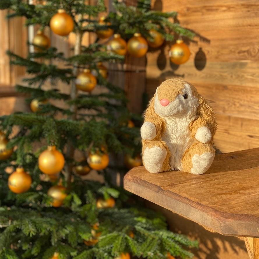 Bunny at Almadvent