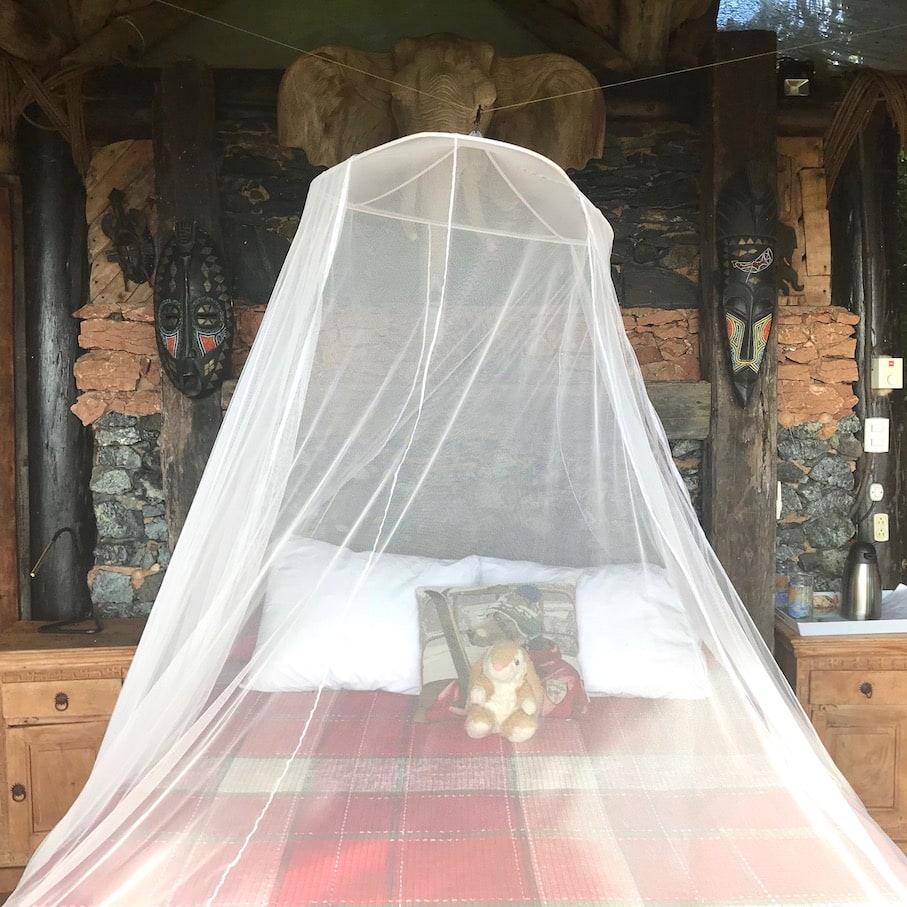 Bunny in Villa Paraiso