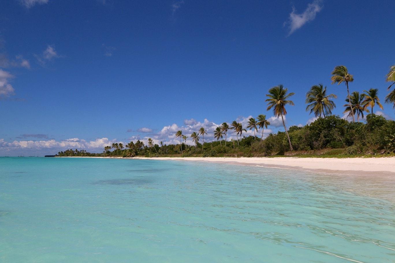 Amazing beaches on Isla Saona