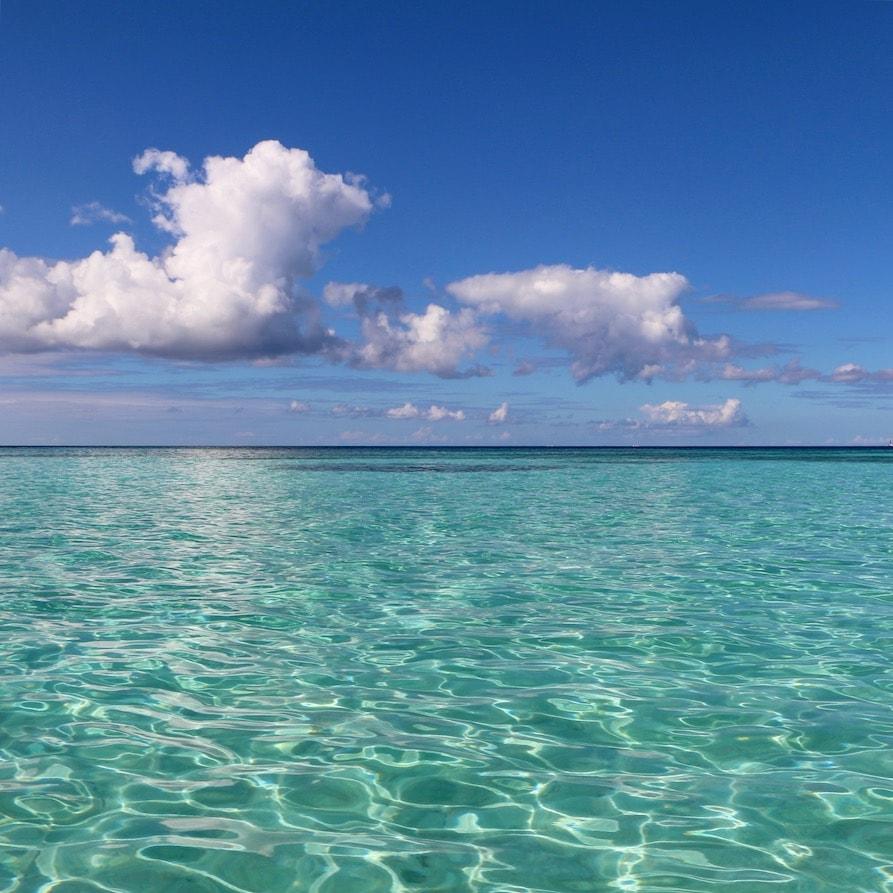 The beauty of Isla Saona